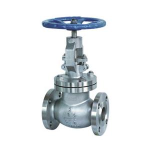 api globe valve