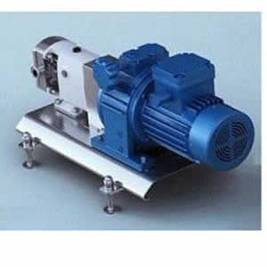 lobe pump with explosion-proof motor